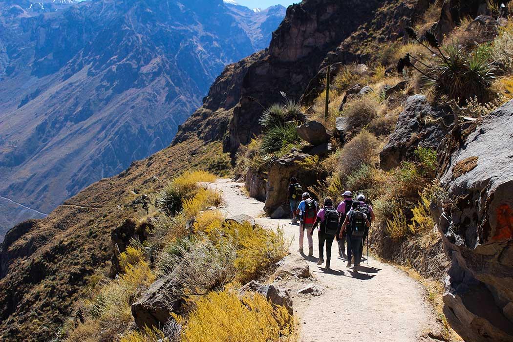 Chemin Montagne Randonnée
