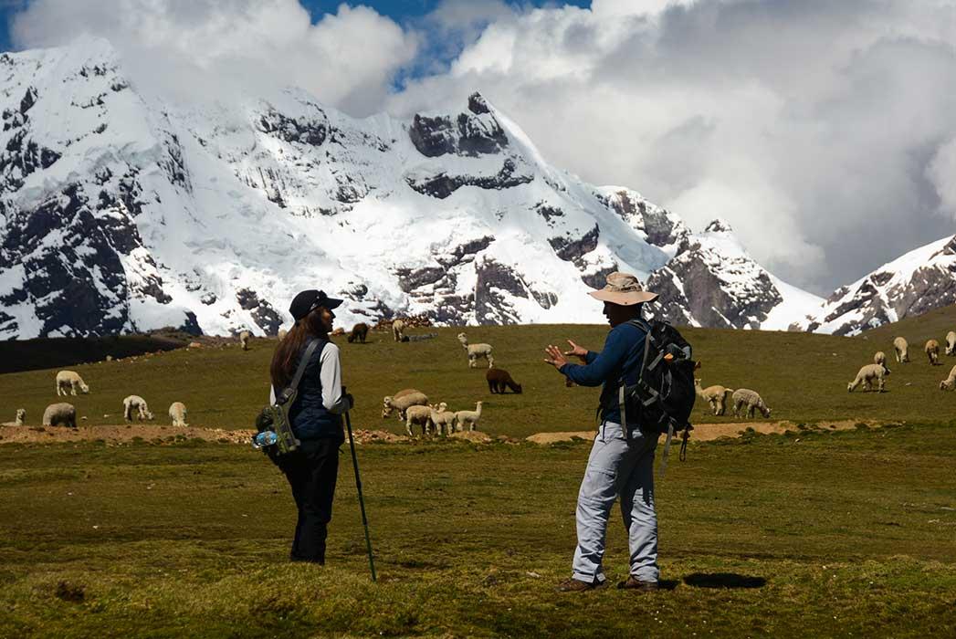Montagne Lama Randonnée