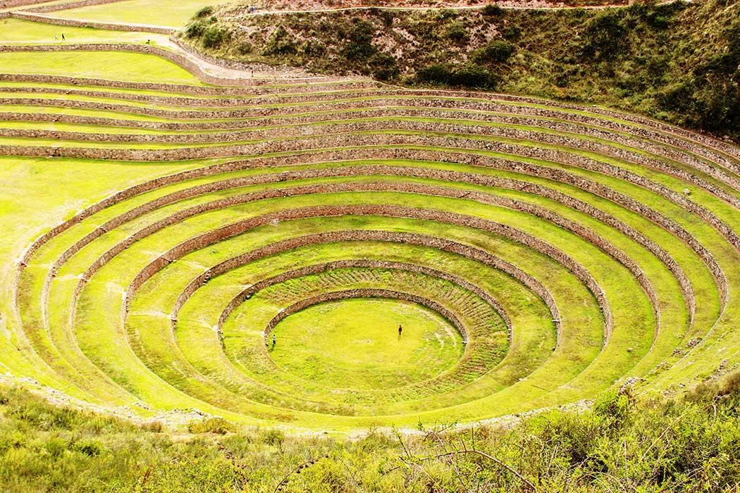 Moray Cusco Vert